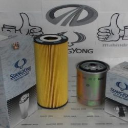 Oil Fuel Filter Set Rexton Rx290D
